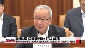 Domestic consumption shows positive signs but still weak: Hyun