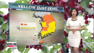 Yellow dust blankets nation, temps on hot side