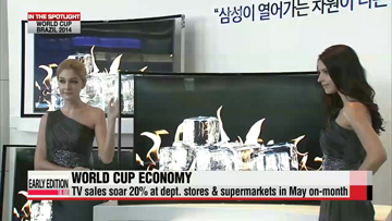 2014 World Cup Brazil: Economic gain for Korean companies & national brand