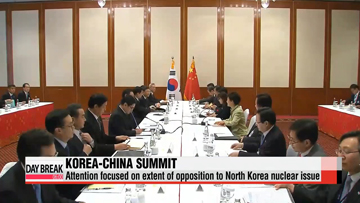 North Korea, Japan and FTA to top agenda for President Xi's state visit to Seoul