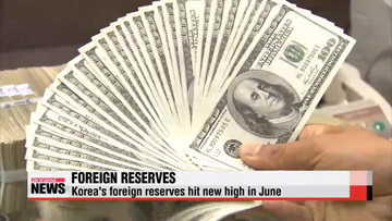 Korea's foreign exchange reserves hits new high in June
