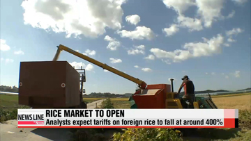 Korea opens rice market starting 2015