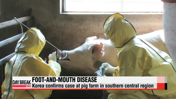 Korea confirms case of foot-and-mouth disease at pig farm