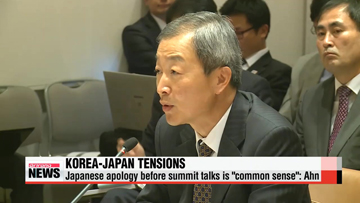 "Japanese apology not precondition to talks but ""common sense"": Korean ambassador to U.S."