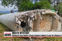 Debris found on Reunion part of Boeing 777: Malaysia