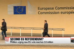Petition urging new EU referendum reaches 3 million