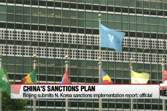 China submits N. Korea sanctions implementation report: official