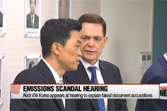 Audi Volkswagen Korea appears at hearing to explain faked document accusations