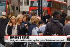 Immigration and terrorism top Europeans' list of concerns: poll
