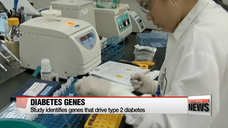 Study identifies genes that drive type 2 diabetes
