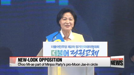 Main opposition party's election of mainstream leader 'positive step': expert