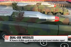 N. Korea's SLBMs could be deployed as land-based missiles: expert