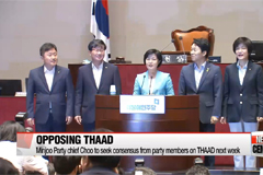 Ruling Saenuri Party adopts official stance supporting THAAD deployment