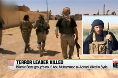 Islamic State group's no. 2 Abu Muhammed al-Adnani killed in Syria