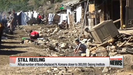 Flood damage in N. Korea worse than regime's official reports