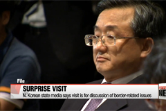 Chinese vice foreign minister makes surprise visit to North Korea
