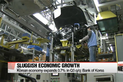 Korean economy expands 0.7% in Q3 q/q: BOK