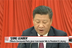 China's Communist Party gives 'core leader' title to President Xi Jinping