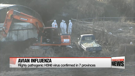 Highly pathogenic H5N6 virus confirmed in 7 provinces