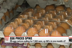 Egg prices soar over 50% amid bird flu outbreak