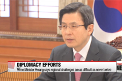 Acting president, foreign minister review diplomatic challenges with key ambassadors