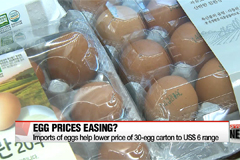 Chicken prices soar by 148% amid bird flu outbreak to US$ 1.90/kg