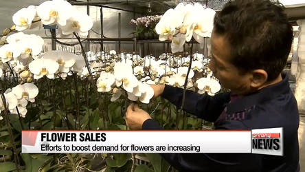 Efforts to boost demand for flowers are increasing