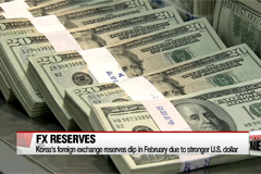 Korea's foreign exchange reserves dip in February due to stronger U.S. dollar