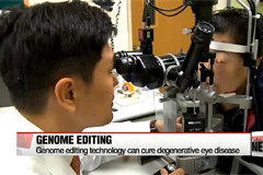 Genome editing technology can cure degenerative eye disease
