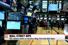 U.S. stocks down on oil price drop, Fed rate hike fears