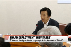 THAAD should be deployed as soon as possible for multi-level defense: S. Korean FM