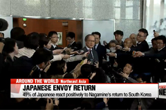 49% of Japanese react positively to Nagamine's return to Korea