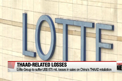 Lotte Group to suffer US$875 mil. losses in sales on China's THAAD retaliation