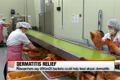 Korean researchers discover lactic acid bacteria from kimchi could help treat atopic dermatitis