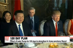 China's Xi asks Trump for 100 days to strengthen N. Korea sanctions: report