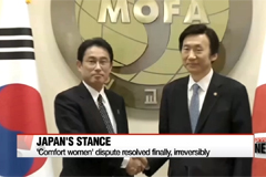Japan files formal objection to UN committee's recommendation of modifying 'comfort women' agreement