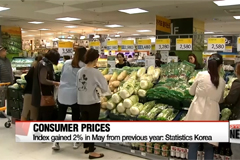 Consumer prices rose to gov't target level of 2% in May