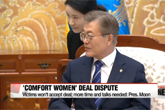 Japan tells S. Korea importance of fully carrying out 'Comfort Women' deal