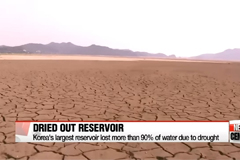 Continued drought causes water shortages and insect problems across Korea