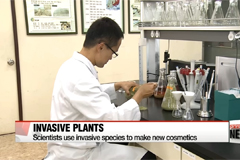 Reseach team comes up with cosmetics made of invasive plants