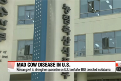 Korean gov't to strengthen quarantine on American beef after detection of mad cow disease in Alabama