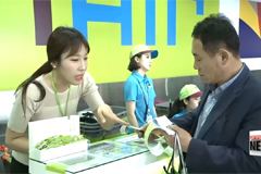 Korea's low-cost carriers getting more popular at expense of full-service flights