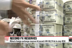 Korea's foreign exchange reserves hit record US $ 383.76 bil. in July: BOK