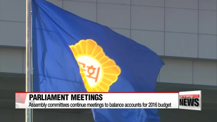 National Assembly committees to continue meetings to balance accounts for 2016 budget