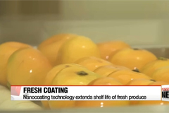 Nanocoating technology extends shelf life of fresh produce