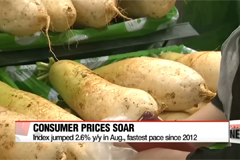 Consumer prices jump on soaring fresh produce prices