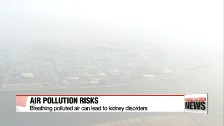 Air pollution contributes to kidney disorders