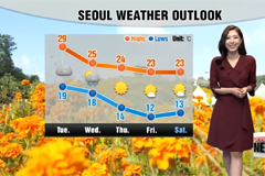 Summer like afternoon highs under mostly sunny skies