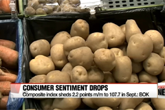 South Korea's consumer sentiment drops for second straight month
