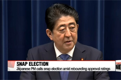 Japanese PM calls snap election